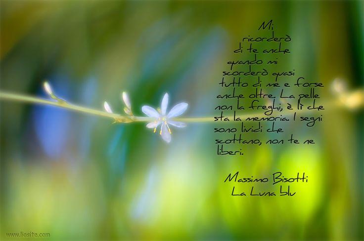 Massimo #Bisotti - Mi ricordero' di te .....