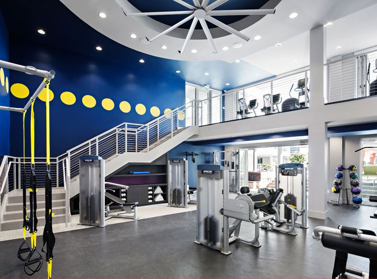 Two Story Fully Equipped Fitness Center At AMLI Lex On Orange A Luxury Apartment