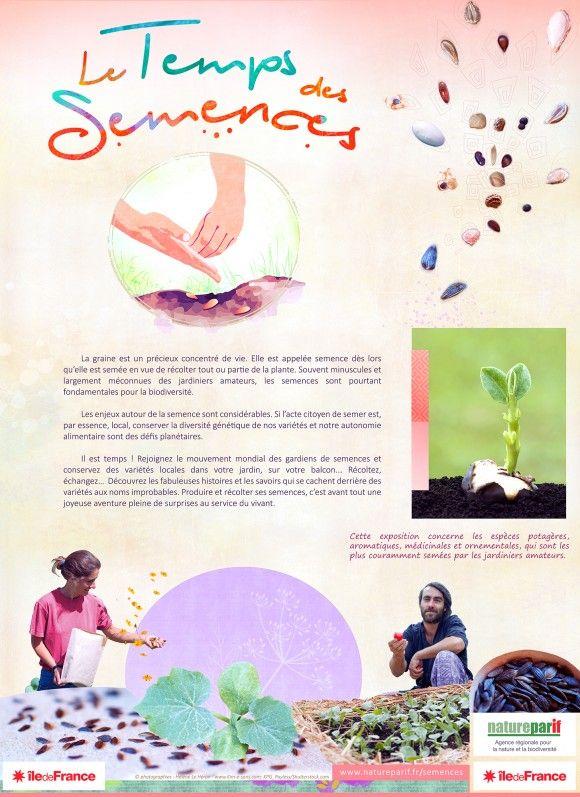 Une #exposition consacrée aux enjeux autour des semences, Natureparif - le portail dynamique de la nature et de la... http://www.pariscotejardin.fr/2016/10/une-exposition-consacree-aux-enjeux-autour-des-semences/