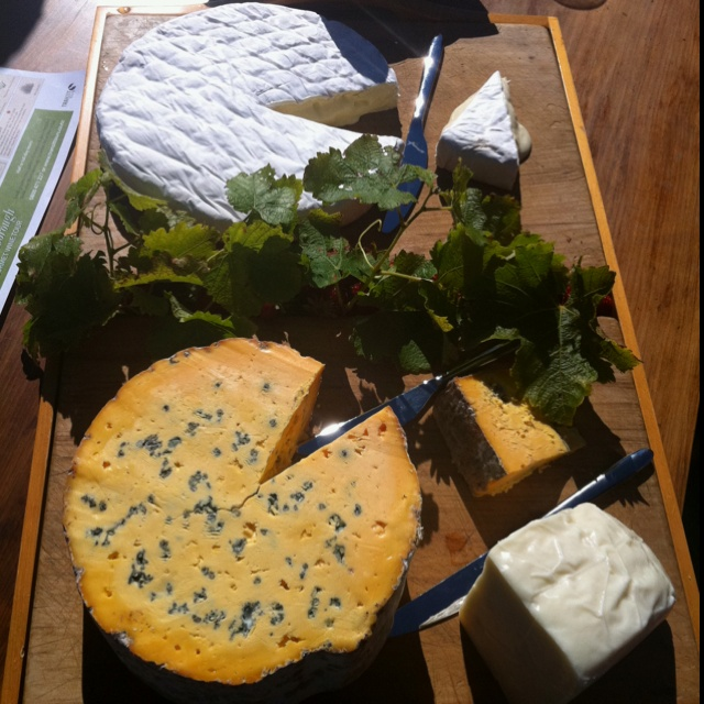 Kingsmeade cheeses in martinborough NZ