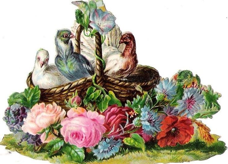 Oblaten Glanzbild scrap die cut chromo Taube dove pigeon Korb basket