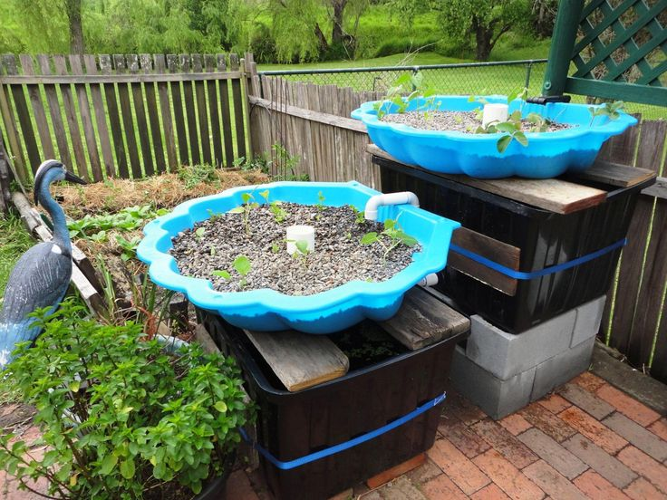 Charmant 805 Best Aquaponics Images On Pinterest | Aquaponics, Hydroponics And  Hydroponic Gardening