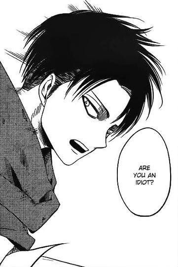 I say this a lot. Of I got Levi people might listen to me *evil grin*