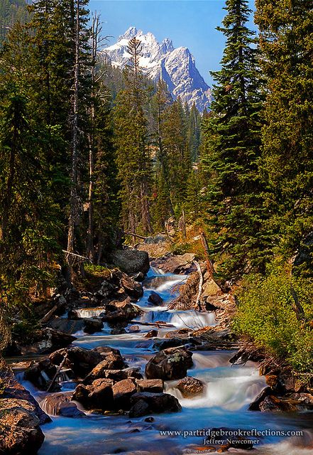 Grand Teton National Park, Wyoming; photo by .Jeffrey Newcomer