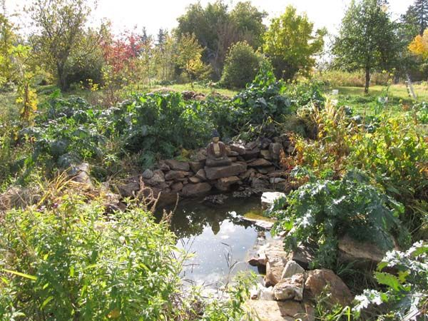 Kootenay permaculture institute pond in mandala garden for Jardin permaculture