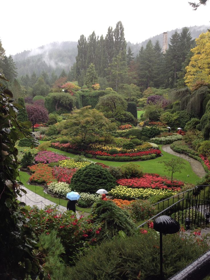 11 best images about time to go back victoria on pinterest - Best time to visit butchart gardens ...