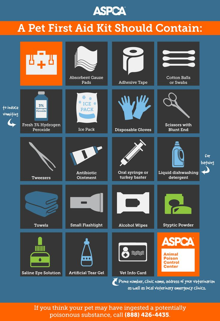 September is Disaster Preparedness Month. Make sure you have everything you need in case of a life-threatening emergency!   To help you create your home's prep kit, the ASPCA Animal Poison Control Center (APCC) has provided the following checklist of items to include.