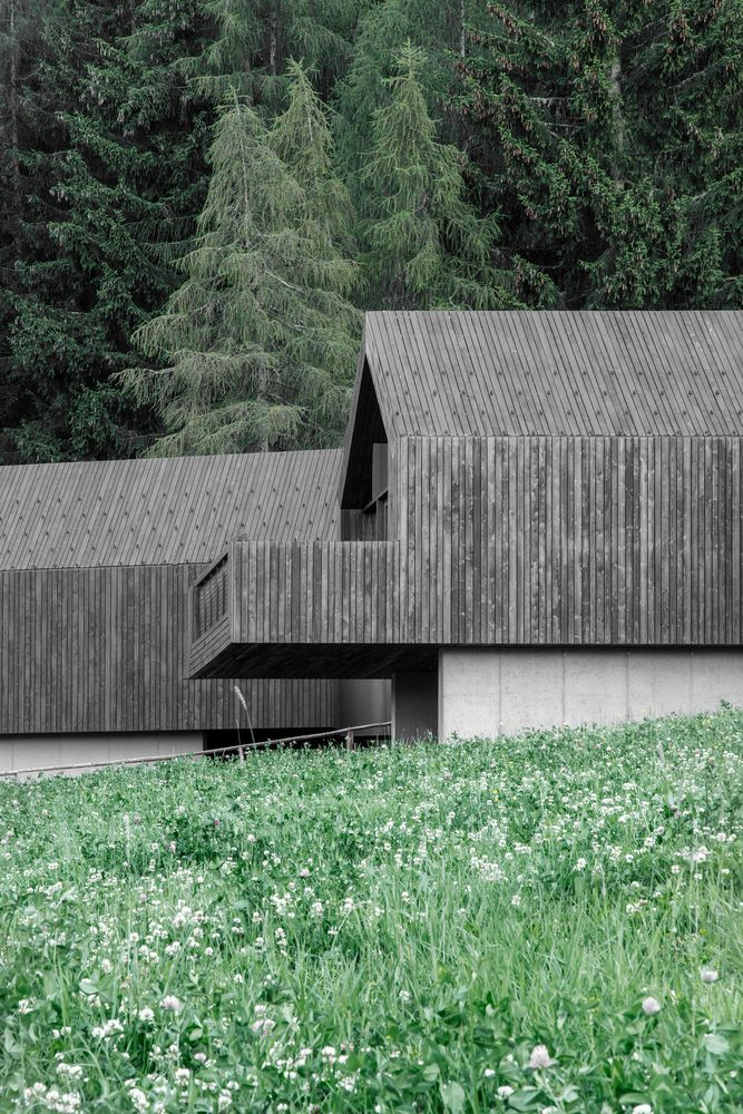 Gallery of Fan Forest Houses / bergmeisterwolf architekten – 5