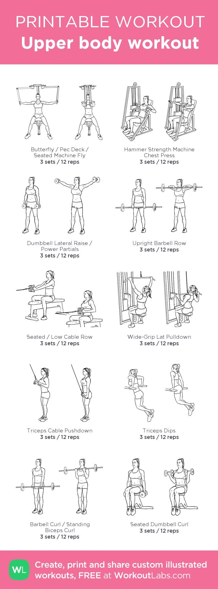 Beginner upper body workout – my custom workout was created by WorkoutLabs.com – Workouts