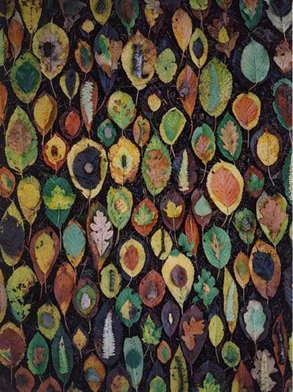 Tim Pugh:    Woodland Floor Rearrangement, October 2005.