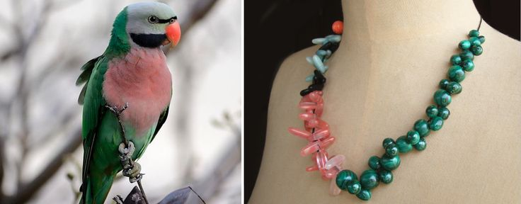 The Moustache Parakeet Necklace