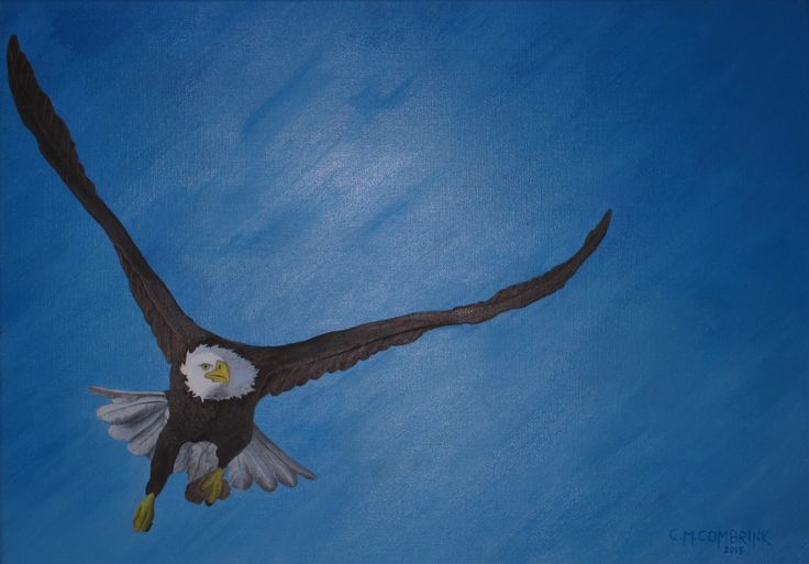 Eagle with Manna Oil Painting - Christiaan Combrink 2013