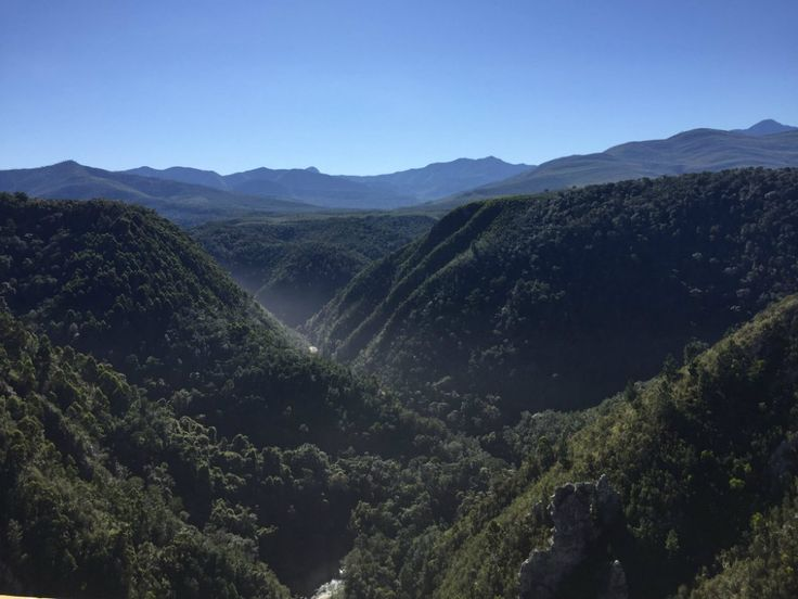 On the Garden Route: Bungee Jump at Tsitsikamma National Park. The view is simply stunning from the Bloukrans River Bridge!