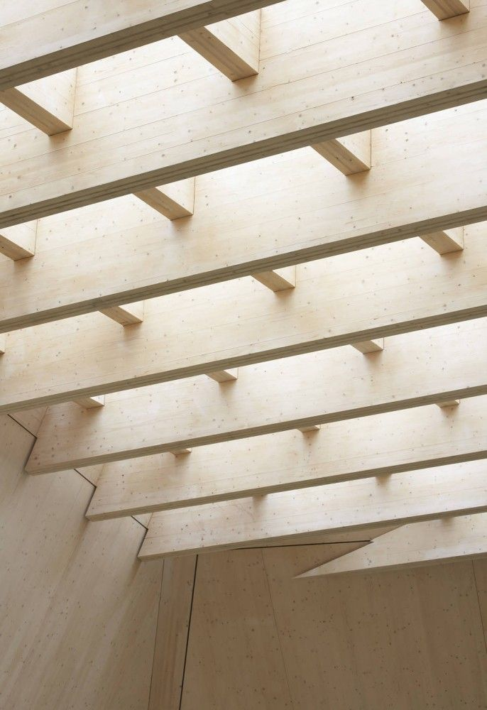 The Hive | Feilden Clegg Bradley Studios. Timber lvl. Laminated timber exposed structure. Beams. Skylight.