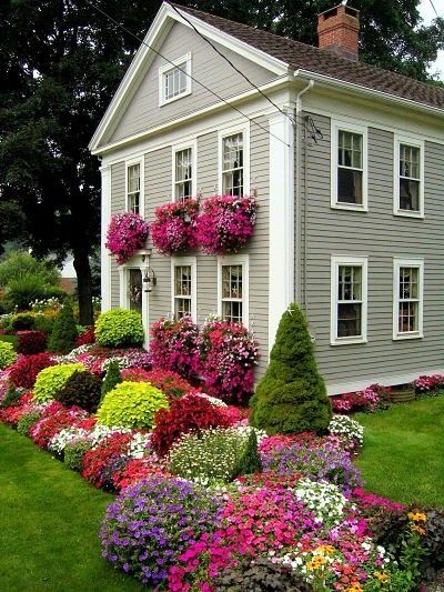 charming flowers echoed in the windowboxes