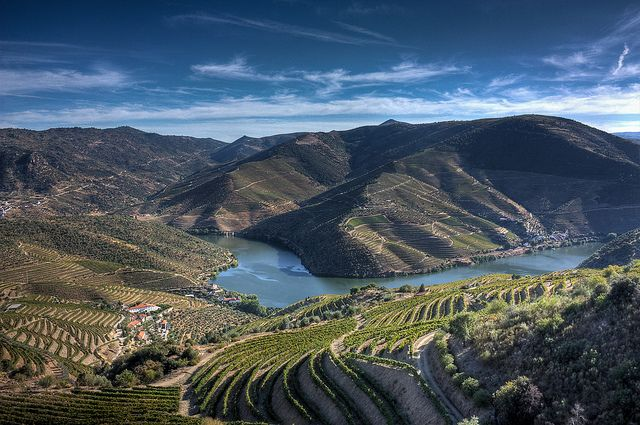 Vineyards in Douro Valley, Portugal. Here the winemakers still tread on their grapes, and it is said to be a great autumn travel destination!