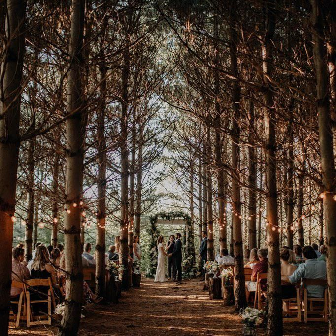 23 Of Ohio S Top Wedding Venues Forest Wedding Venue Ohio Wedding Venues Wedding Venues
