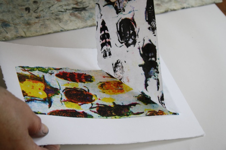 Sue Brown printing using gum arabic transfer as a colour separation print