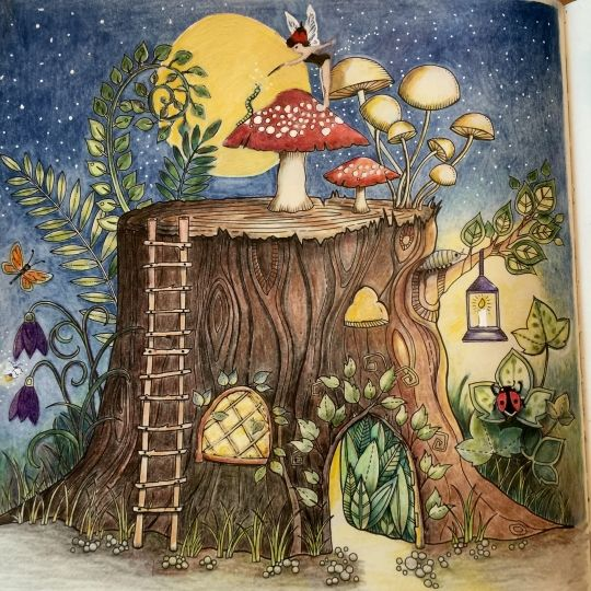 17 Best Images About Enchanted Forest Johanna Basford On