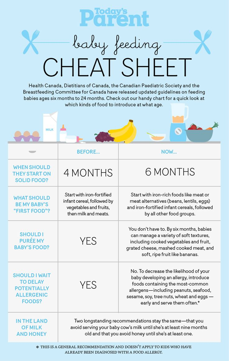 10 best Baby Food Infographics images on Pinterest | Infographics ...