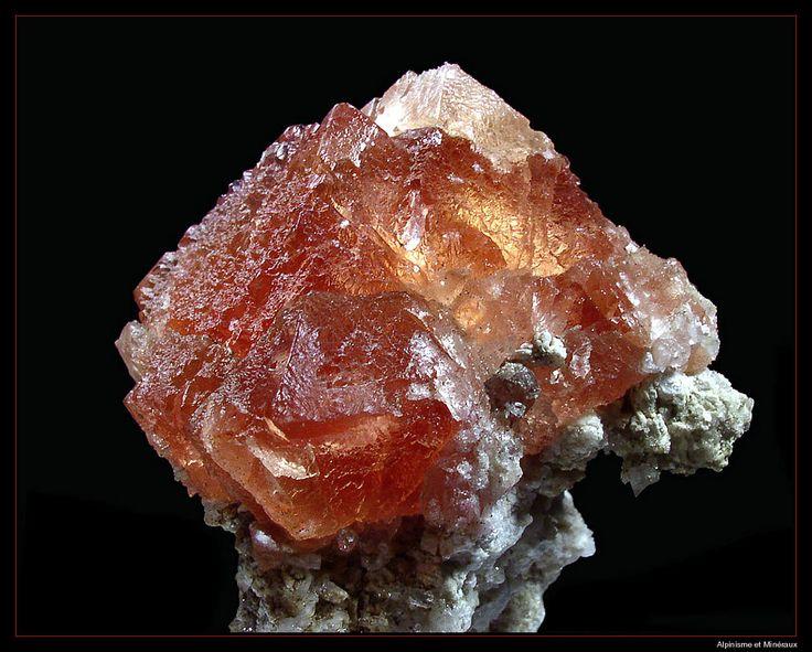 Fluorite - Talèfre glacier, Mont Blanc Massif, Chamonix, Haute-Savoie, Rhône-Alpes, France Size: 5 cm