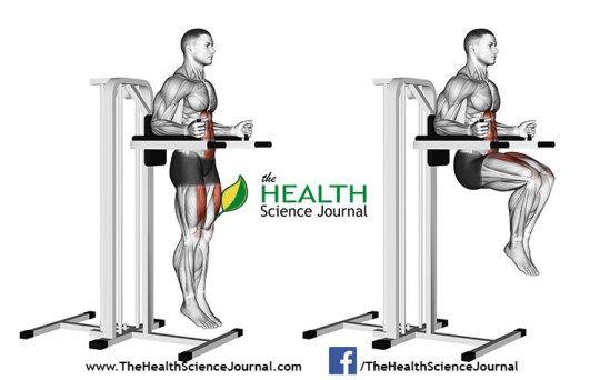 © Sasham   Dreamstime.com - Exercising for bodybuilding. Knee Raise on parallel bars