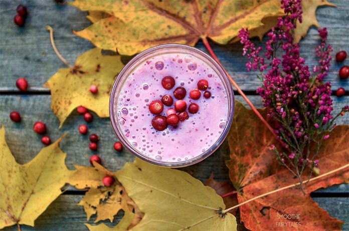 Super-healthy Lingonberry Smoothie