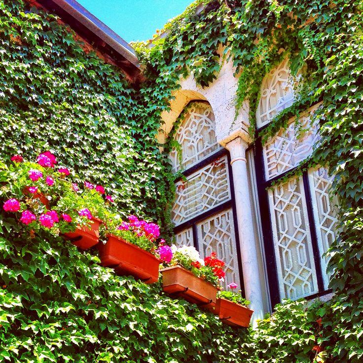 Lebanese window douma lebanon old lebanon for Arabesque lebanon cuisine