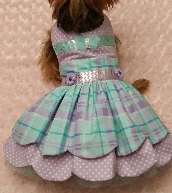 Ocasión especial perro vestido de tamaño medio