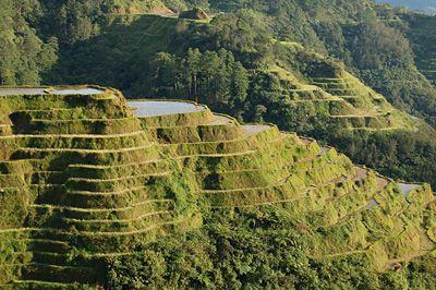 Philippines : trek dans les rizières de Banaue