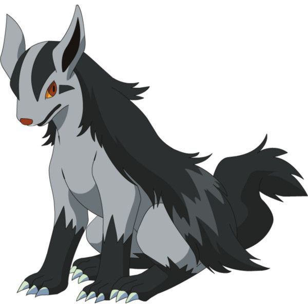 What Level Does Poochyena Evolve 9 best images about mi...