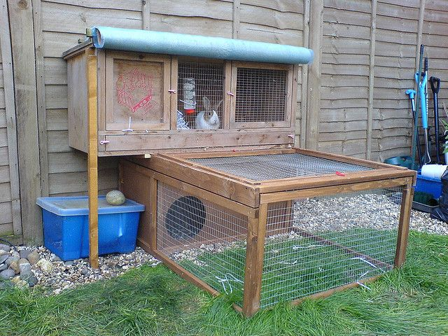 124 best rabbit enclosure ideas images on pinterest for Outdoor guinea pig cage