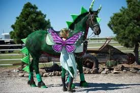 halloween costumes for horses and riders ideas - Google Search