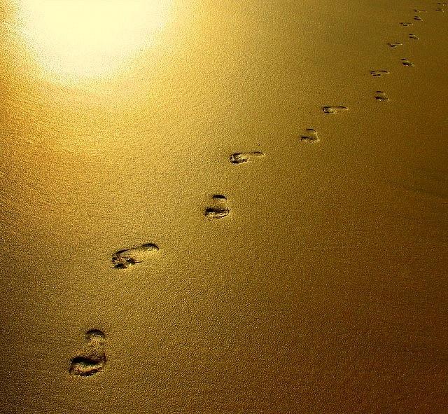 golden sand  (Fuerteventura)