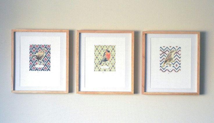 Láminas enmarcadas Papelería Chicureo aves endémicas