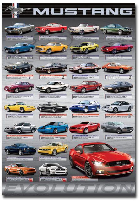 Ford Mustang Evolution Fridge Magnet Collectible Size    Ford Mustang Fordclassiccars