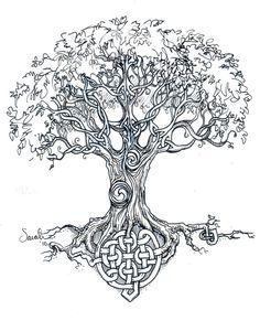 Celtic Tree Of Life Quotes by @quotesgram