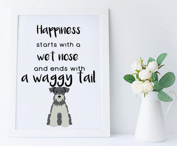 Miniature Schnauzer wall art,illustrated dog art,home decor print,dog lover print,schnauzer gifts,schnauzer art, dog poster, schnauzer print