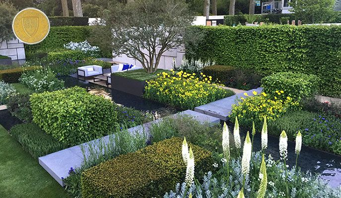White and yellow De Stijl style colour blocking with white eremus standing out (Daily Telegraph Garden by Marcus Barnett, Chelsea 2015).