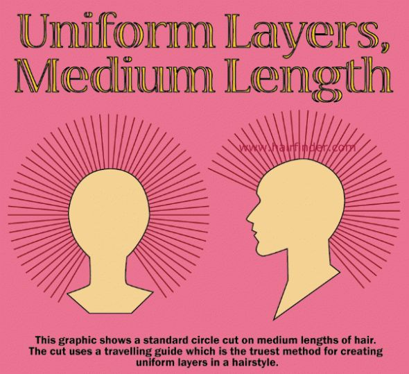 1000 Images About Diagram Haircut On Pinterest