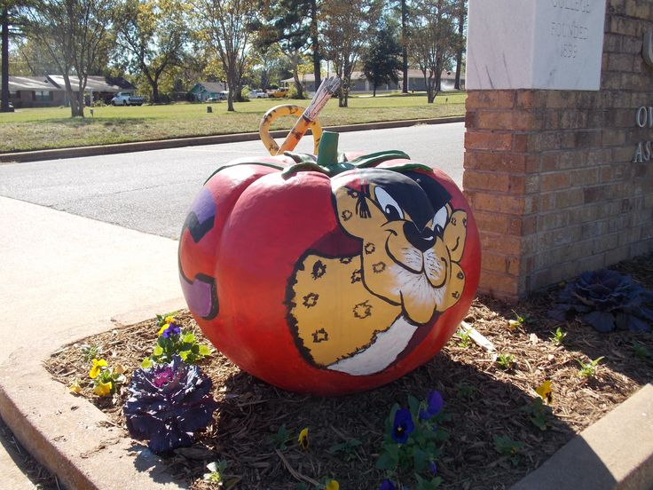 A tomato 'tail' at Jacksonville College, located at 105 B. J. Albritton Dr.