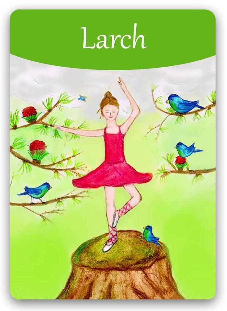 Bach Flower: Larch