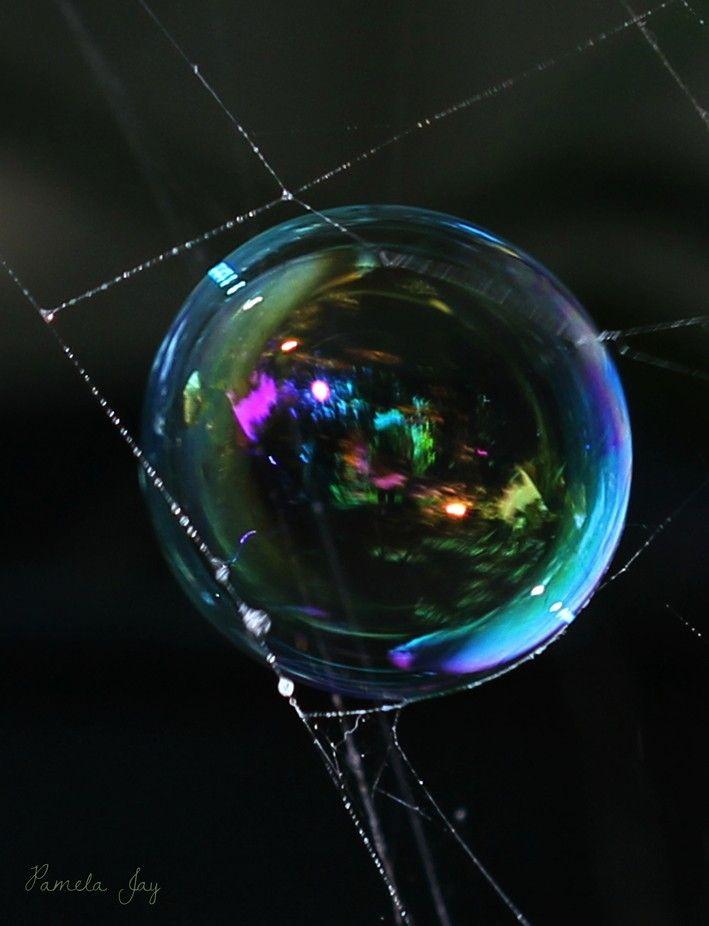 Bubble in a cobweb