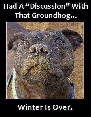 Ground hog hunting...