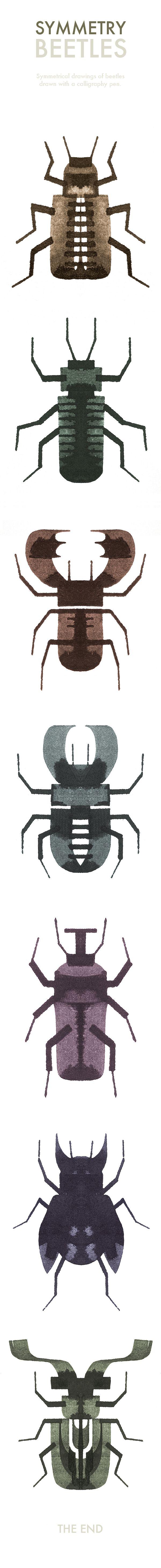 Symmetry Beetles on Behance