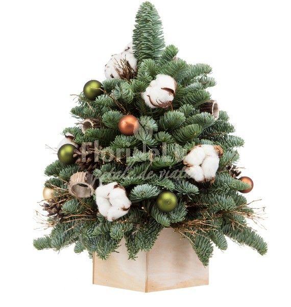E timpul sa impodobim bradutii, sa ne inconjuram de miros de cetina si sa ne lasam atrasi in lumea magica a sarbatorilor de iarna! 🌟✨Trimite-le celor dragi oriunde in Romania brazi de Craciun creati manual de catre expertii floristi FlorideLux: https://www.floridelux.ro/craciun-2017/brazi-de-craciun-2017/ #brazidecraciun #bradcraciun #braddecraciun #craciun2017