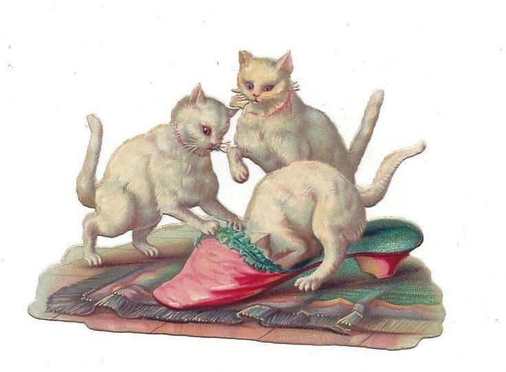 Victorian Die Cut Scrap of 3 White Kittens