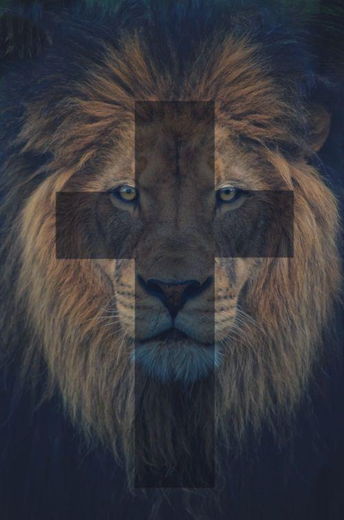 Jesus, the Lion of Judah!!!!!!