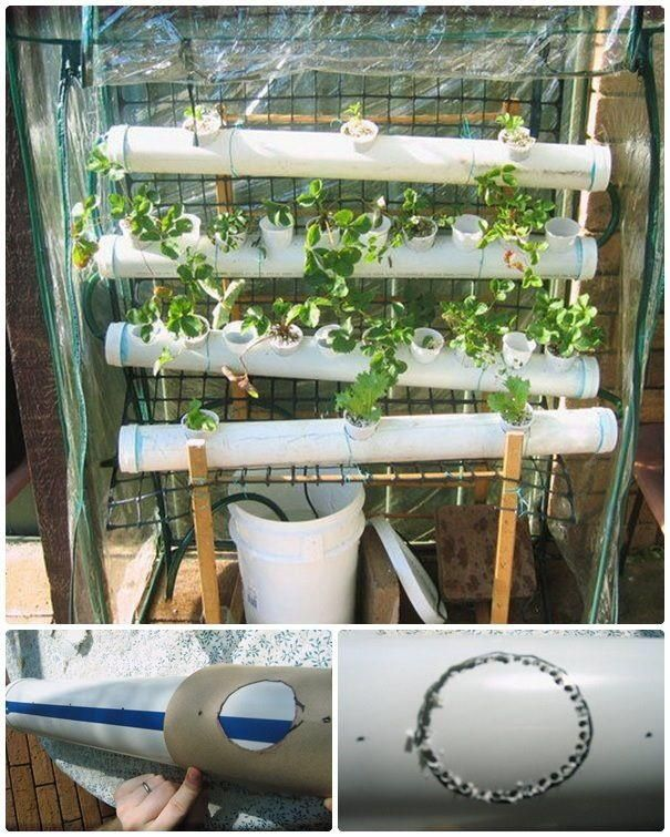 images about Hydroponic and aquaponic designs on