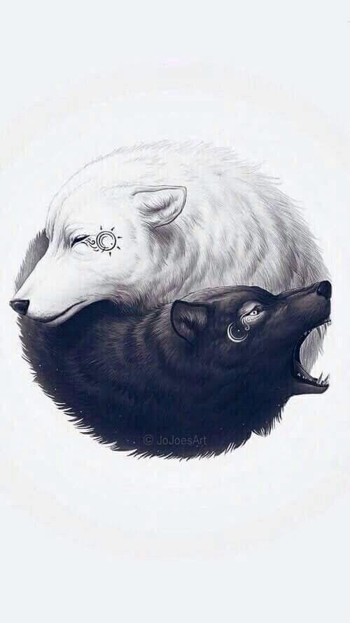 El día y la noche el yin y el yan
